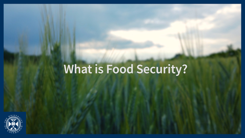 Thumbnail for entry What is Food Security?