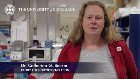Thumbnail for entry Catherina Becker- Centre for Neuroregeneration- Research In A Nutshell- Edinburgh Neuroscience-21/05/2012