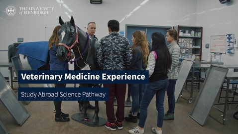 Thumbnail for entry Veterinary Medicine Experience – Study Abroad Science Pathway