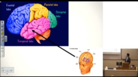 """Thumbnail for entry Brain Injury, Crime and Society: Should justice system become the 'kwik-fit"""" of brain re-engineering?"""
