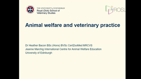 Thumbnail for entry Animal Welfare and Veterinary Practice