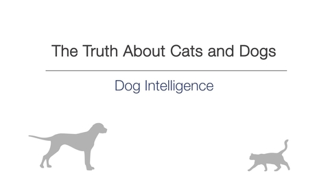 Thumbnail for entry Week 3 - Dog intelligence