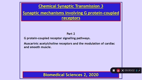 Thumbnail for entry BMS2: Chemical Synaptic Transmission 3 Part 2 Dr Phil Larkman