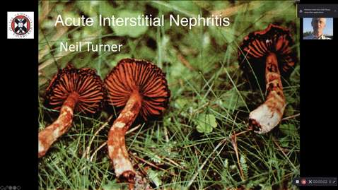 Thumbnail for entry Acute interstitial nephritis