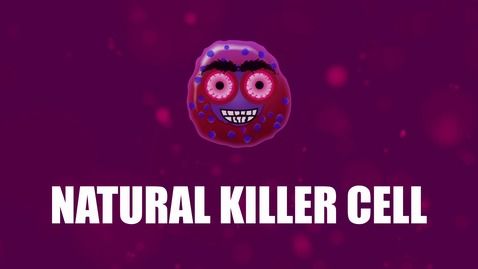 Thumbnail for entry Supercytes - How to say 'Natural killer cell'