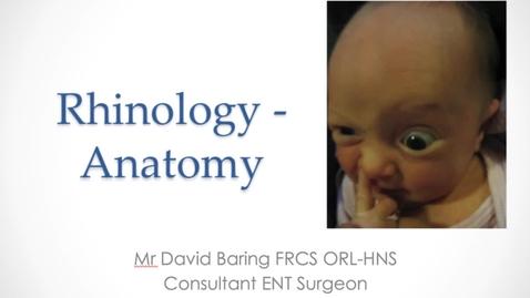 Thumbnail for entry Rhinology - Anatomy presentation