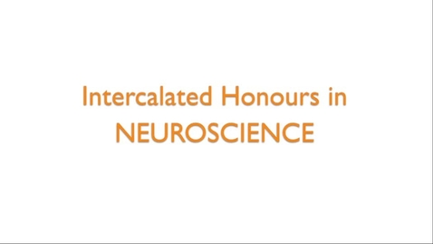 Thumbnail for entry Intercalated Honours in Neuroscience