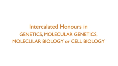 Thumbnail for entry Intercalated Honours in Genetics, Molecular Genetics, Molecular Biology and Cell Biology