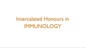 Thumbnail for entry Intercalated Honours in Immunology