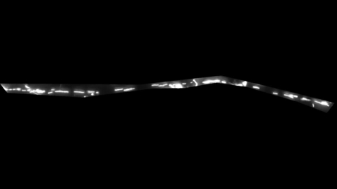 Thumbnail for entry Film 2 - a damaged motor neuron with the C9orf72 gene after boosting the mitochondria - time lapse