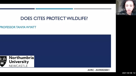 Thumbnail for entry 'Does the Convention on International Trade in Endangered Species of Wild Fauna and Flora Protect Wildlife?' 9th April 2021