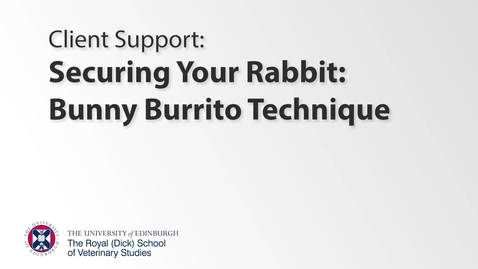 Thumbnail for entry Client Support - Bunny Burrito