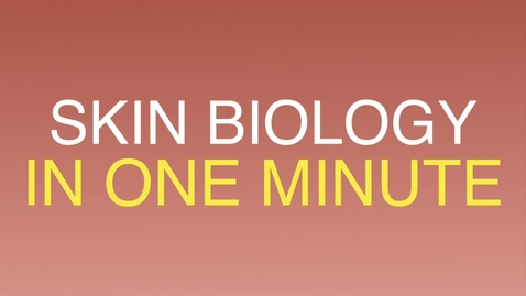 Thumbnail for entry Skin biology in one minute (summer 2017)