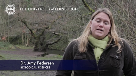 Thumbnail for entry Amy Pederson - Biological Sciences- Research In A Nutshell - School of Biological Sciences -26/06/2012