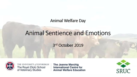 Thumbnail for entry 3Rs Animal Welfare Day - Francoise Wemelsfelder (SRUC).