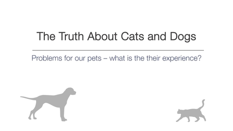 Thumbnail for entry Week 4 - Problems for our pets – What is their experience?