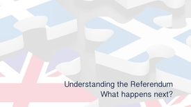 Thumbnail for entry Understanding the Referendum - What happens next?