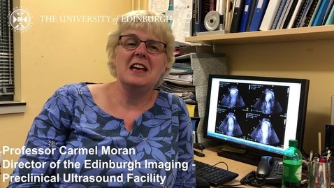 Thumbnail for entry Prof Carmel Moran - Research in a Nutshell