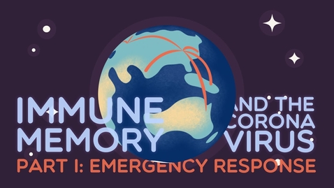 Thumbnail for entry Immune Memory and the Coronavirus Part I: Emergency Response