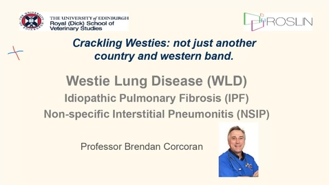 Thumbnail for entry Clinical Club January 2021 - Crackling Westies : not just another country and western band