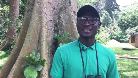 Thumbnail for entry Biodiversity, Wildlife and Ecosystem Health online masters: Anthony Adeea Mba - student testimonial
