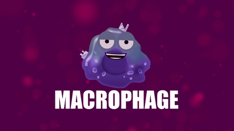 Thumbnail for entry Supercytes - How to say 'Macrophage'