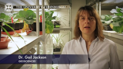 Thumbnail for entry Gail Jackson - Biological Sciences- Research In A Nutshell - School of Biological Sciences -06/03/2013