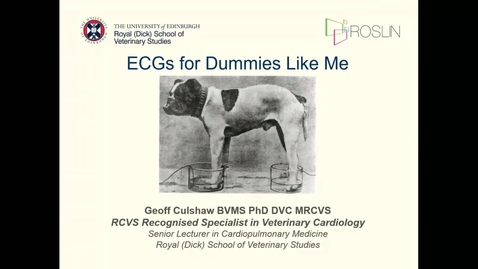Thumbnail for entry ECGs for Dummies Like Me