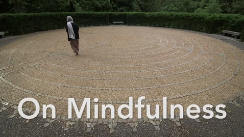 Thumbnail for entry On Mindfulness