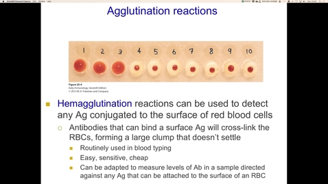 Thumbnail for entry Agglutination reactions