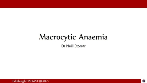 Thumbnail for entry Macrocytic Anaemia