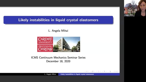 Thumbnail for entry Likely instabilities in liquid crystal elastomers - Angela Mihai