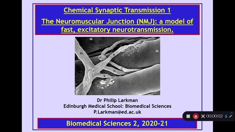 Thumbnail for entry BMS2: Chemical Synaptic Transmission 1 Part 1 Dr Phil Larkman