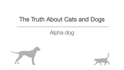 Thumbnail for entry Week 2 -  Alpha Dog