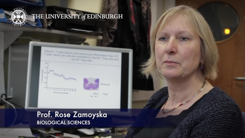 Thumbnail for entry Rose Zamoyska  - Biological Sciences- Research In A Nutshell - School of Biological Sciences -16/04/2013