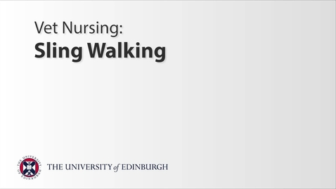Thumbnail for entry Vet Nurse: Sling Walking