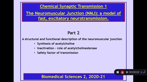 Thumbnail for entry BMS2: Chemical Synaptic Transmission 1 Part 2 Dr Phil Larkman