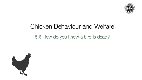 Thumbnail for entry Week 5:  5.6 How do you know a bird is dead?