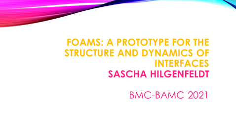 Thumbnail for entry BMC BAMC 2021 Sascha Hilgenfeldt