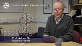 Thumbnail for entry Adrian Bird - Biological Sciences- Research In A Nutshell - School of Biological Sciences -21/01/2013