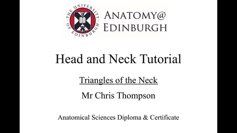 Thumbnail for entry Triangles of the Neck Online Tutorial