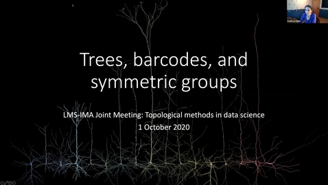 Thumbnail for entry IMA, LMS Joint Meeting: Topological methods in Data Science (1-2 October 2020)