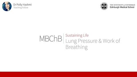 Thumbnail for entry Lung Pressures & Work of Breathing