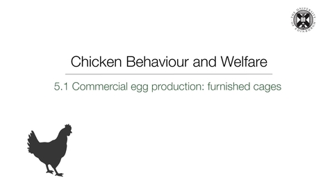 Thumbnail for entry Week 5:  5.1 - Commercial egg production: furnished cages