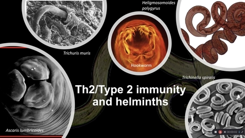 Thumbnail for entry Why Th2 part 1 - helminths - 2020