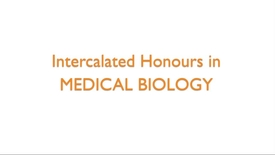 Thumbnail for entry Intercalated Honours in Medical Biology