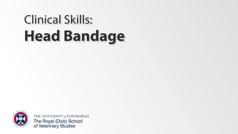 Thumbnail for entry Bandaging Class - Head Bandage