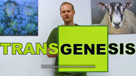 Thumbnail for entry What is transgenesis all about?