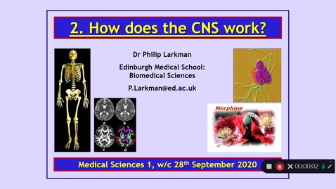 Thumbnail for entry Medical Sciences 1 How does the CNS work? Part 1 Dr Phil Larkman
