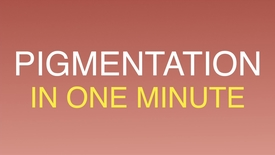 Thumbnail for entry Pigment biology in one minute.